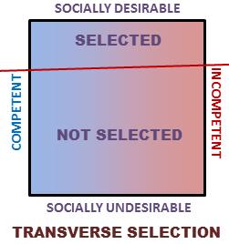 transverse-selection